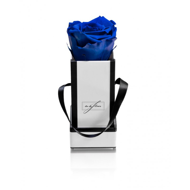 White Box XS - Ocean Blue