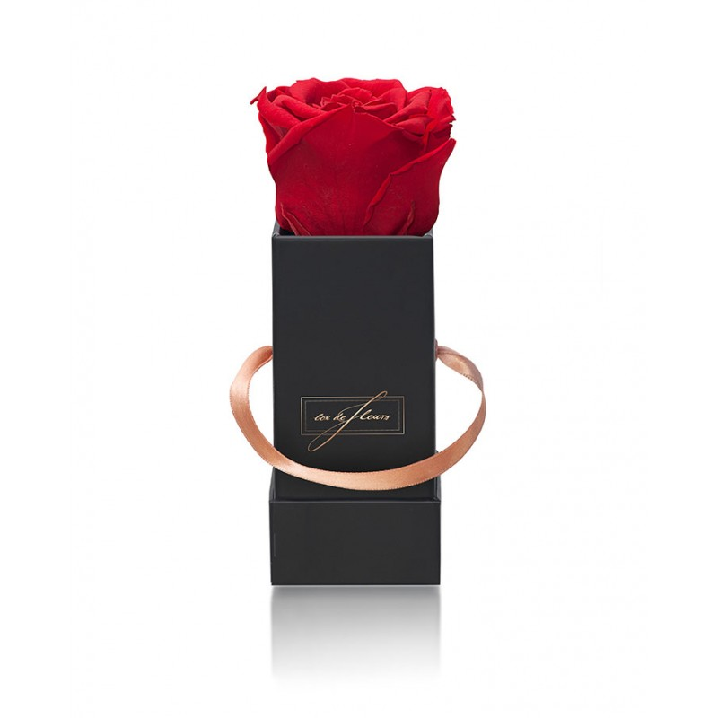 Black Box XS - Forever Red