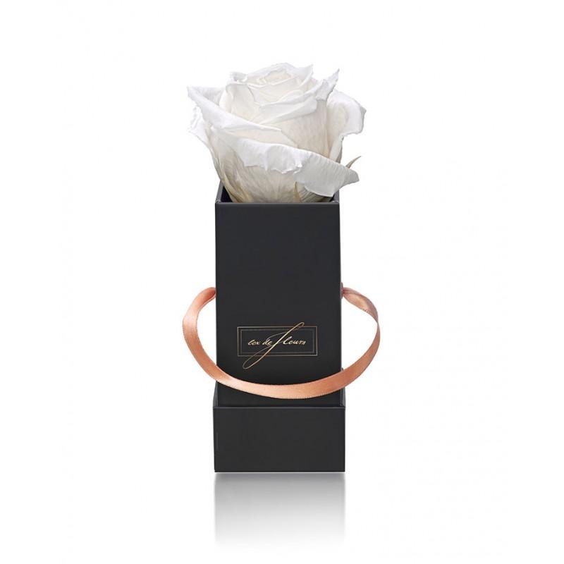 Black Box XS - White